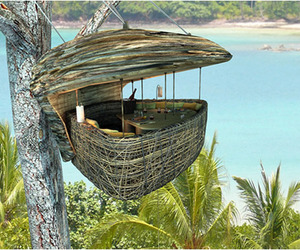 Tree Dining Pod Thailand