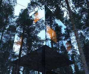 Tree-hotel-gives-you-a-360-degree-view-m