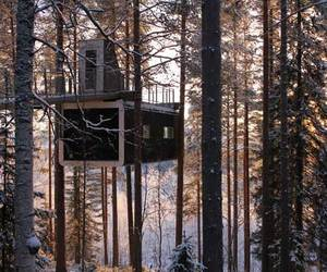 Tree-hotel-in-harads-sweden-m