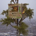 Tree-house-on-stedelijk-museum-of-modern-art-s