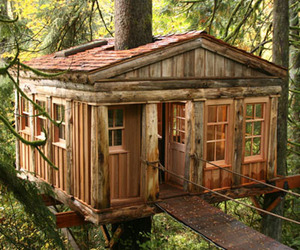 Tree House Point In Washington