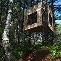 Tree-room-by-christopher-smith-architect-s