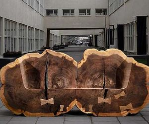 Tree-trunk-benches-gives-homage-to-the-elm-trees-m