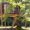 Treehouse-s