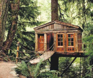 Treehouse-workshop-m