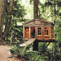 Treehouse-workshop-s