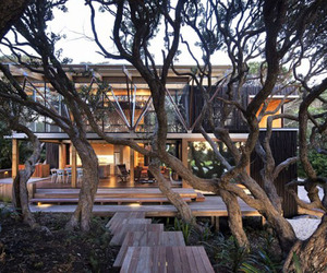 Under-pohutukawa-by-herbst-architects-m