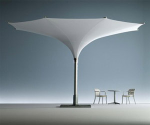 Unique-parasol-umbrellas-tulip-parasols-from-mdt-m