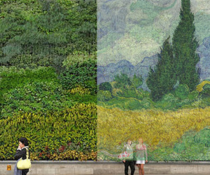 Van Gogh Painting Recreated with 8,000 Plants