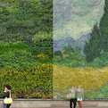 Van-gogh-painting-recreated-with-8000-plants-s
