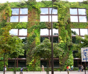 Vertical-garden-looks-refreshing-m