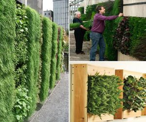 Vertical-gardening-everything-you-wanted-to-know-m