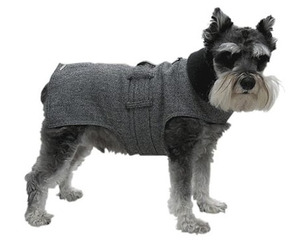 Wall-street-dog-trench-coat-m