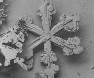What Snowflakes Looks Like Under a Microscope