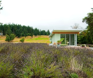 Whidbey-island-potting-shed-by-build-llc-m