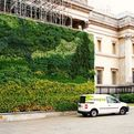 Worlds-first-living-wall-painting-s