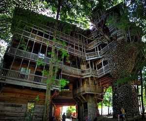 Worlds-tallest-tree-house-is-100-feet-tall-m