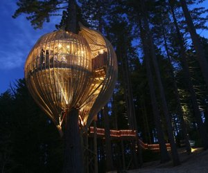 Yellow Treehouse Restaurant in New Zealand