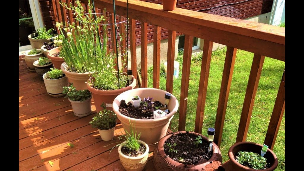 Bag of tips and tricks for your garden