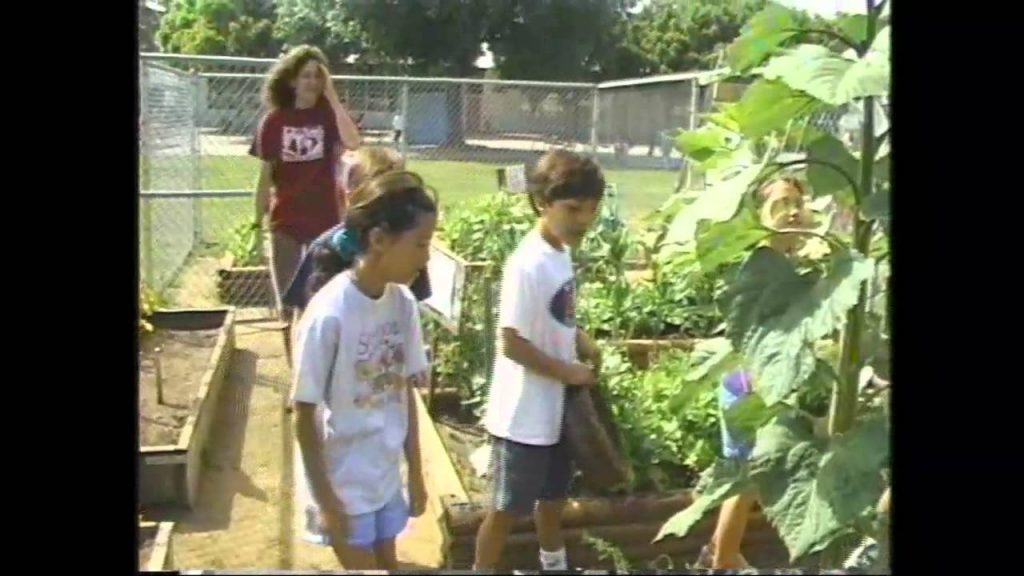 Kids Making Student Gardens