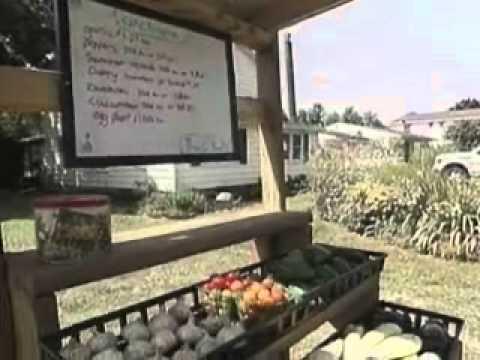 Board: Hamlin teen must shut down farm stand