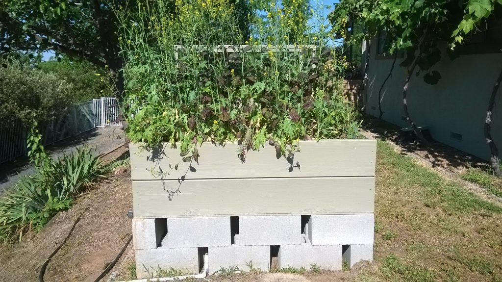 Easy DIY Root Proof and Gopher Proof Raised Garden Bed