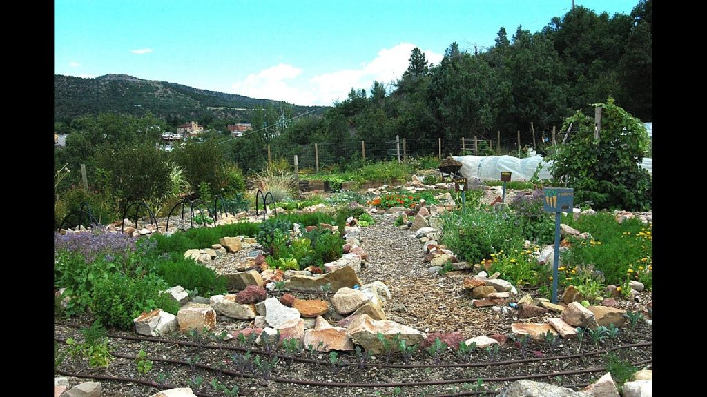 The Garden Project of SW CO 2016 – Long