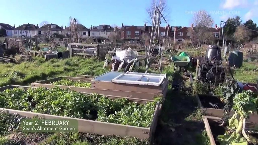 Sean's Allotment Garden S2 E3: February Tour 2014