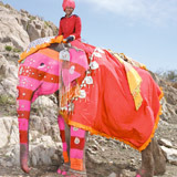 Painted-elephant-pink-red-stripes-160