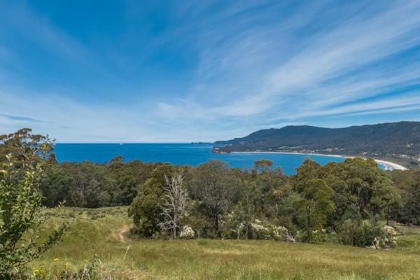 Eaglehawk Neck View