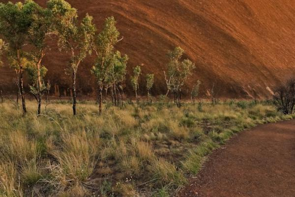 Uluru, Southern Face