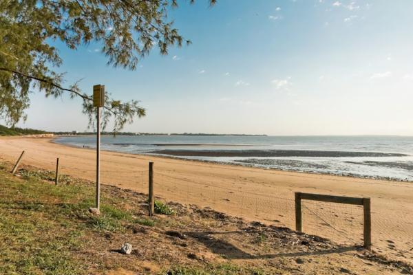 Lake Alexander Beach