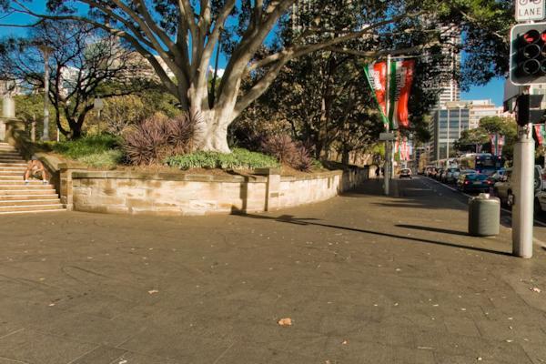 College & Park St
