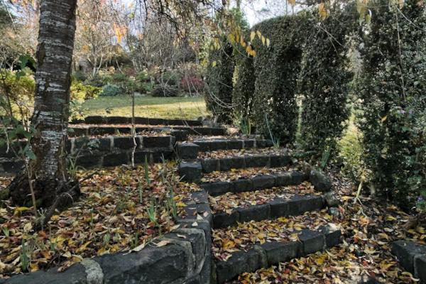 Forest Glade private garden