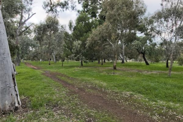 Adelaide Reserve