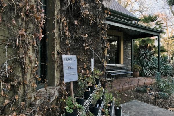 Botanic garden of Adelaide