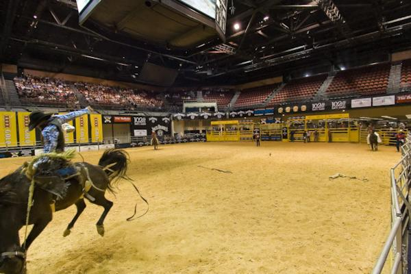NFR Rodeo 2010