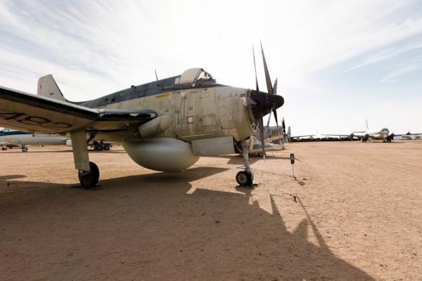 AEW-3 Gannet
