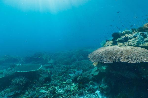 Raja Ampat Melissa Island