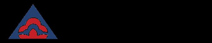USA-LSA