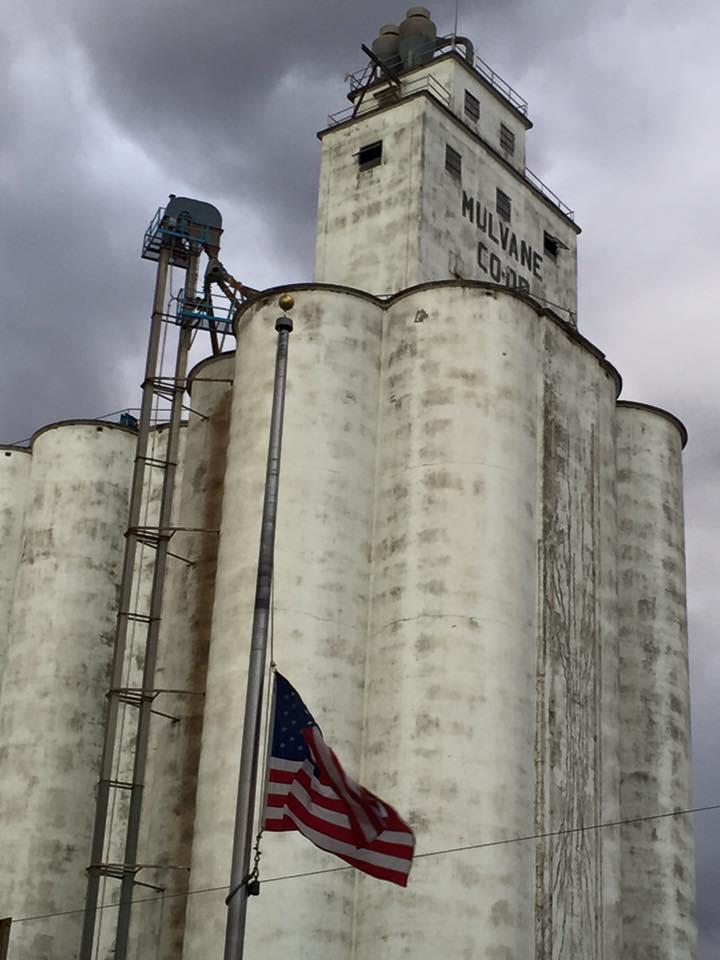 jam perdagangan pilihan jagung