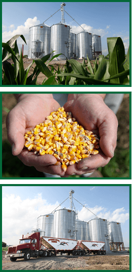 We provide the following services elevator storage, seed sales, custom planting and trucking