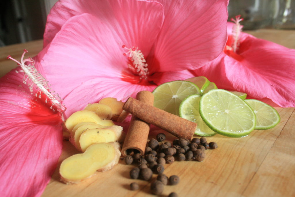 Image result for ginger lime hibiscus