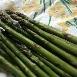 Maintaining an Asparagus Bed