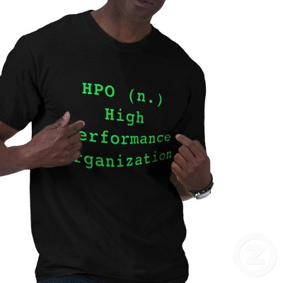 High performance organization (HPO)