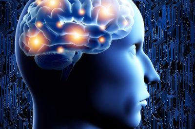 bigstock-Brain--D-illustration--42694150