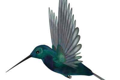 bigstock-Blue-Green-Hummingbird-5287726