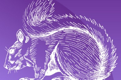 purple squirrel2