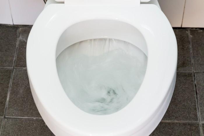 Down the toilet