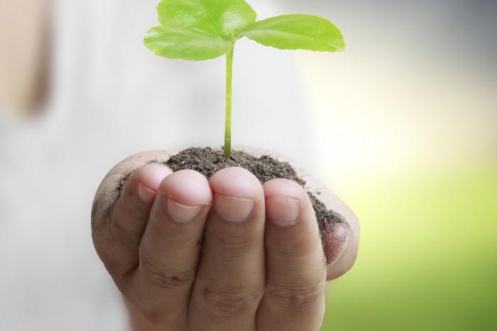 Nurture grow train develop